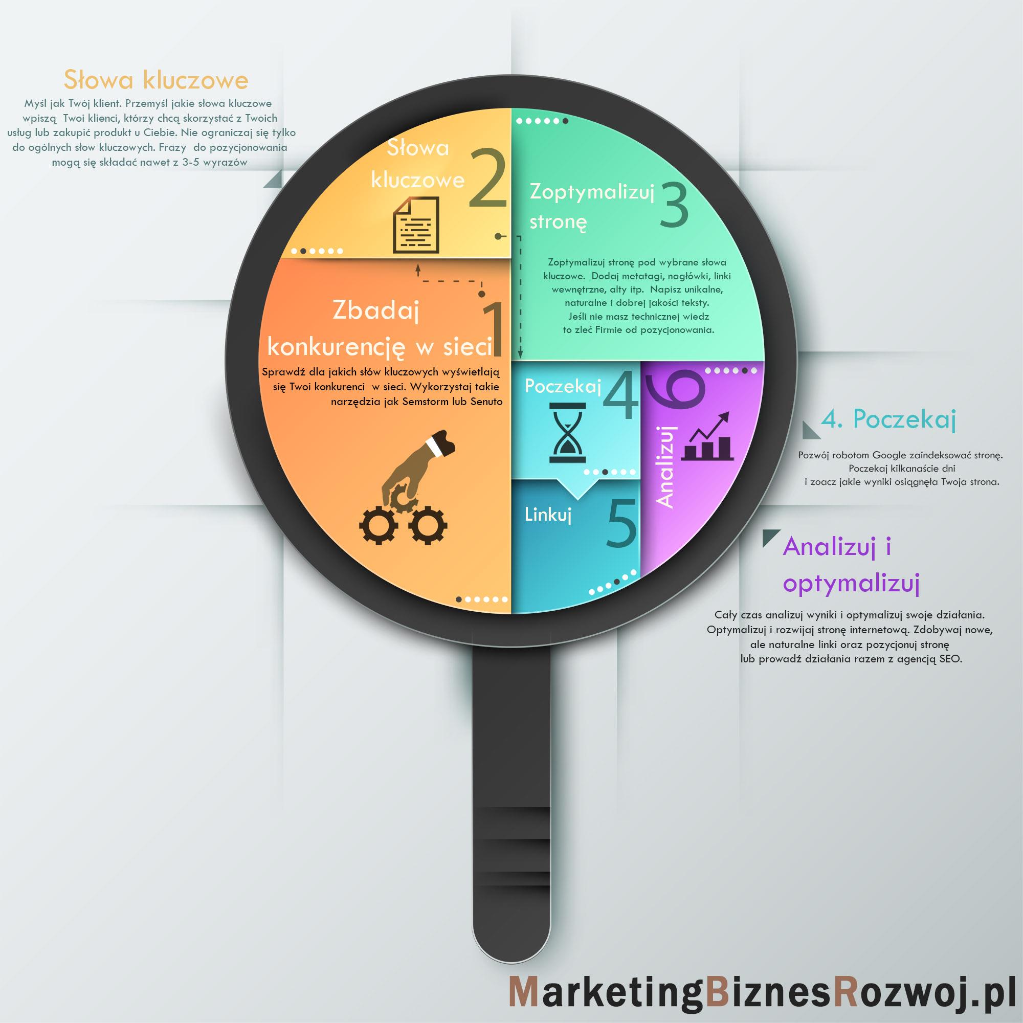 infografika jak wypozycjonować stronę internetową